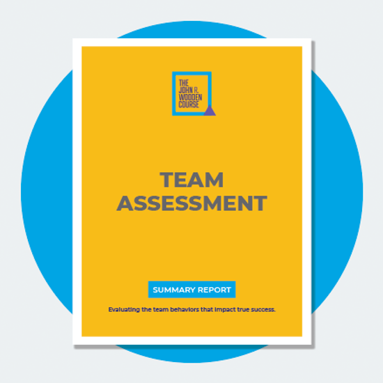 Picture of The Pyramid of Success: Assessment For Business and Teams